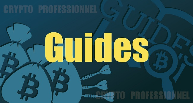 guide crypto professionnel