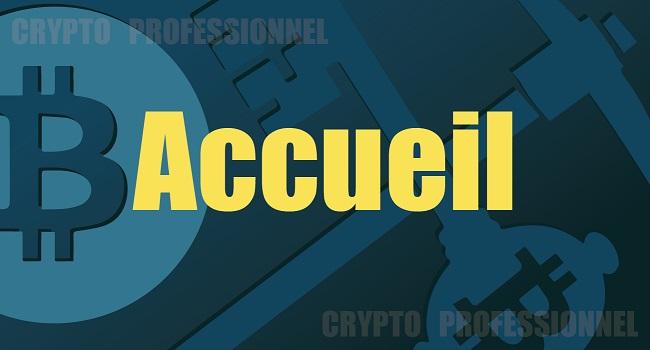 accueil crypto professionnel